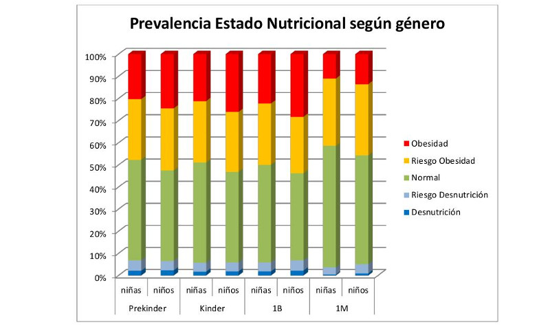 Informe Mapa Nutricional Junaeb 2013