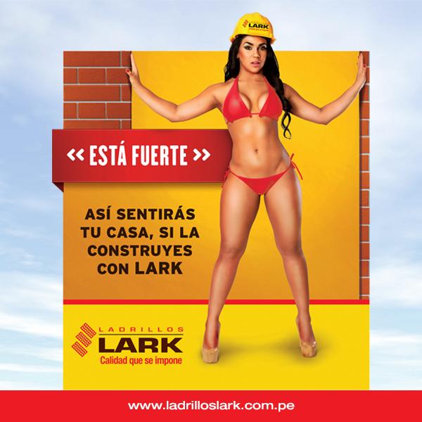 Ladrillos Lark   Facebook