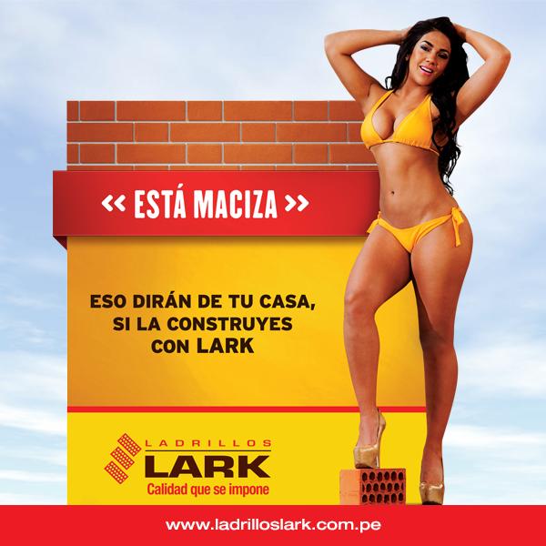 Ladrillos Lark | Facebook