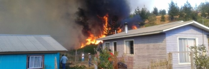 Incendio de Santa Juana | Andrea Parra (RBB)