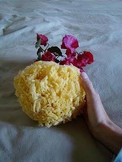 Tus Flores de Cayena   Blogspot