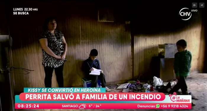 |Captura Chilevisión