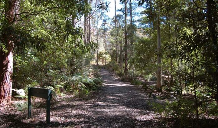 Mount Royal National Park