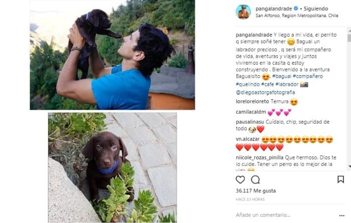 Pangal Andrade | Instagram