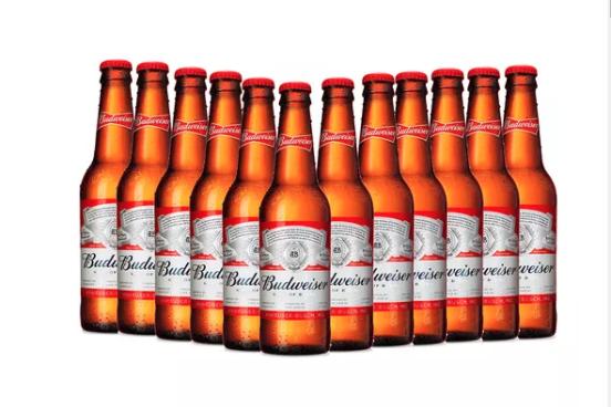 12 Botellas Budweiser 355ml