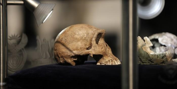 Homo luzonensis: el nuevo eslabón de la especie humana que fue descubierto en cuevas Filipinas
