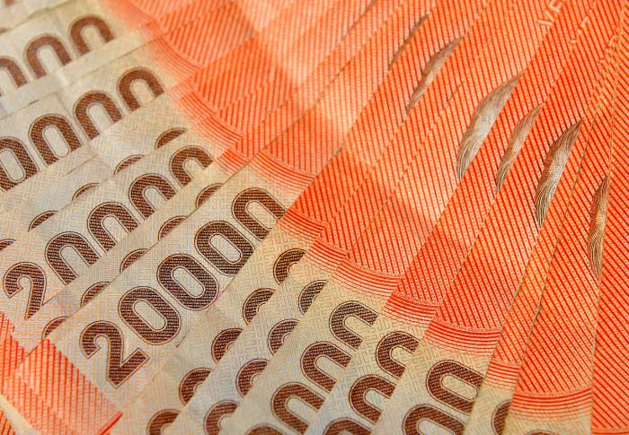 Revisa si tienes bonos como Aporte Familiar Permanente (Bono Marzo), Pilar Solidario, Bono Por Hijo o subsidios