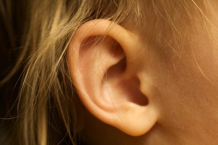 Encuentran garrapata alimentándose del oído de un niño