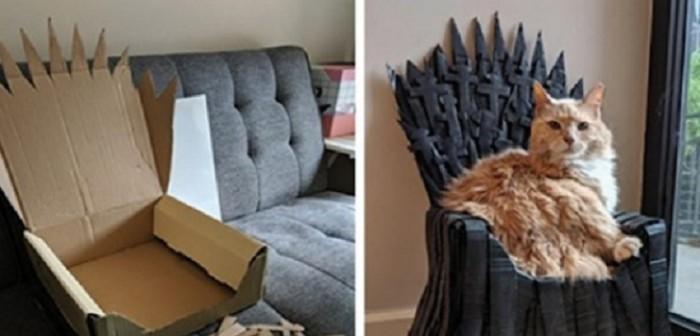 fanatico de game of thrones hizo un trono de hiero para su gato