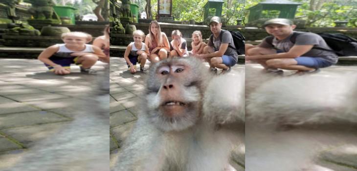 Mono se 'coló' en foto de turistas y se volvió viral