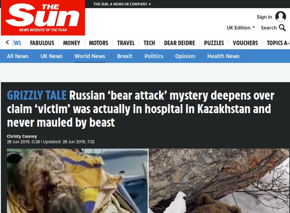 Historia de ruso que habría sobrevivido a 'secuestro' de oso era una fake news