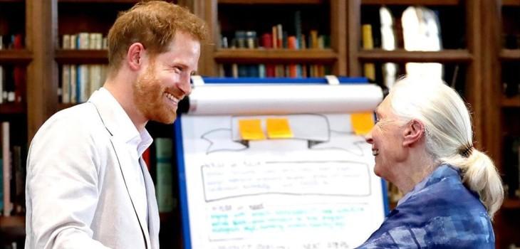 Príncipe Harry se salió del protocolo y protagonizó tierno