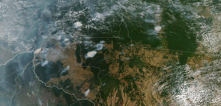 Se quema el pulmón verde del planeta