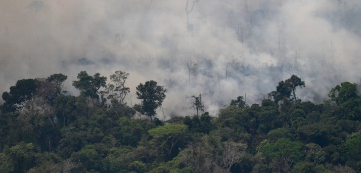 Redes sociales reportaron lluvia en el Amazonas pero lamentablemente era una 'fake news'