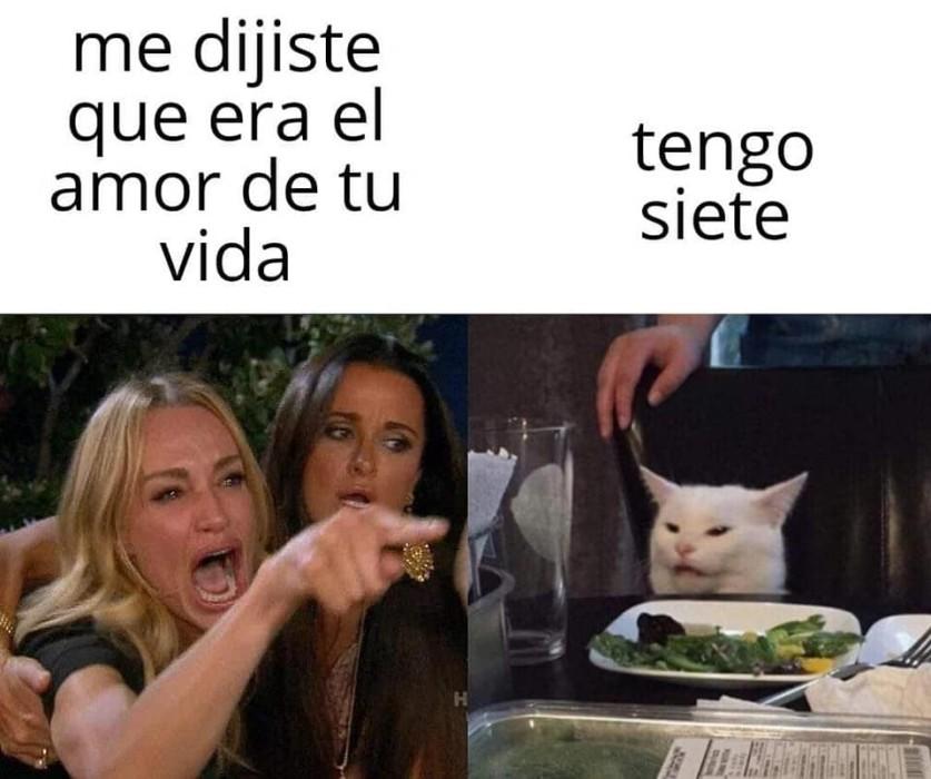 El origen del meme de la mujer que regaña al gato
