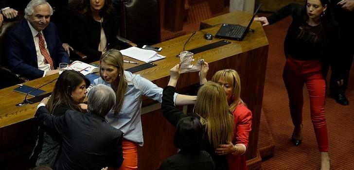Esto decía el cartel de Pamela Jiles que provocó el caos en la Cámara de Diputados
