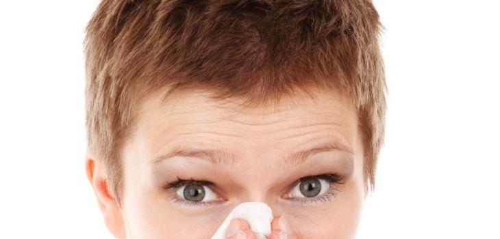 qué hacer si sangra la nariz