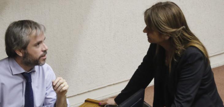 UDI congeló relación con Chile Vamos tras aprobación de paridad: