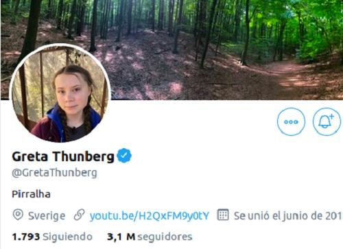 greta thunberg cambio descripcion