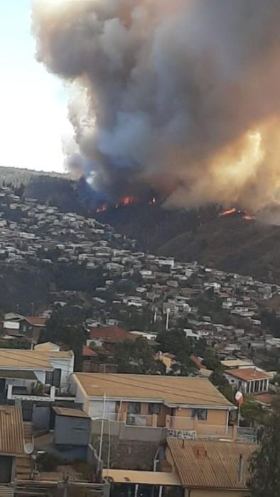 Incendio forestal se registra en sector Rocuant de Valparaíso