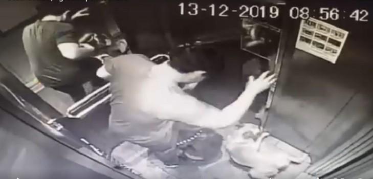 perrita agredida en ascensorac