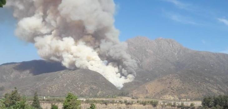 Incendio en Cajón del Maipo
