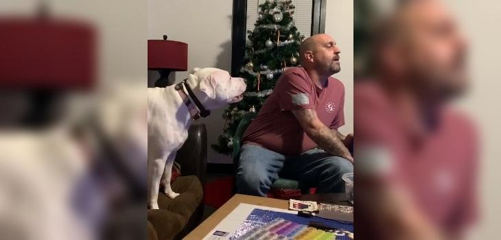 viral perro