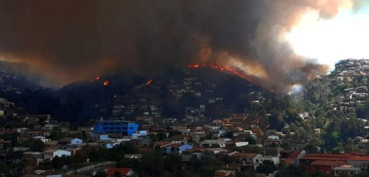 Incendio forestal se registra en sector Rocuant de Valparaíso: Onemi pide evacuar sectores cercanos