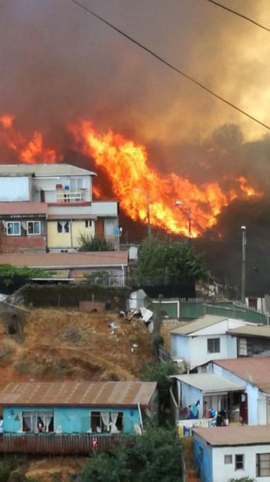 incendio forestal en valparaíso