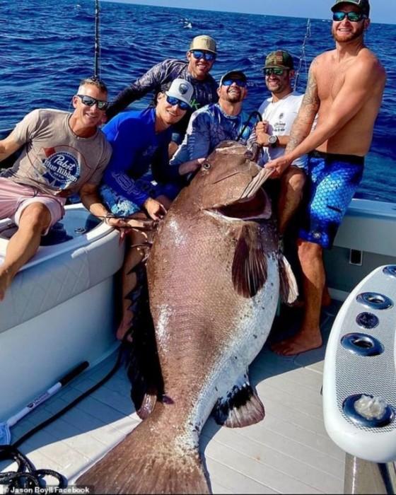 Pez gigante de casi 160 Kg capturado en Florida impacta al mundo