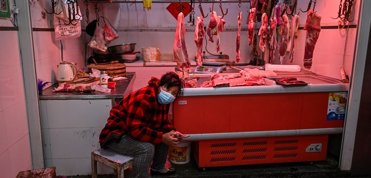 China prohíbe el consumo de animales silvestres