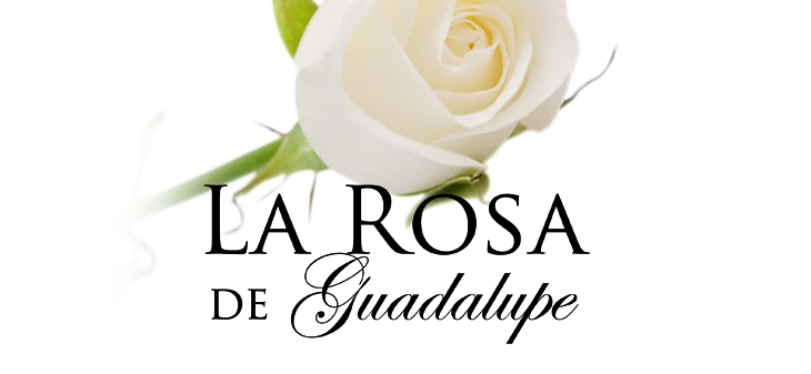 La Rosa de Guadalupe cambia de horario