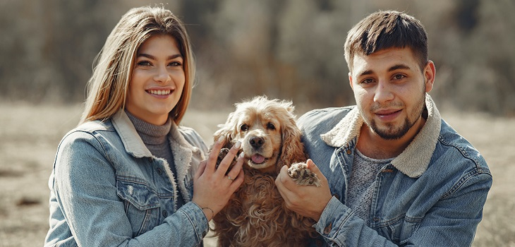 Mascota, perro, humanos