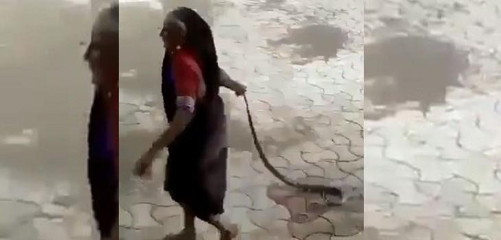 anciana viral cobra