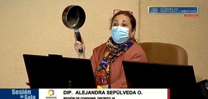 Diputada Alejandra Sepúlveda