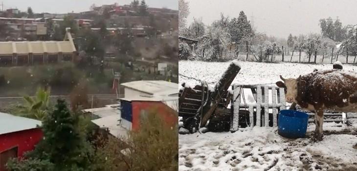 Nieve en Lo Barneche, Machalí y Coya