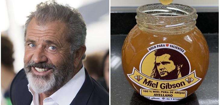 Mel Gibson (d) Agence AFP   Miel Gibson (i) Twitter