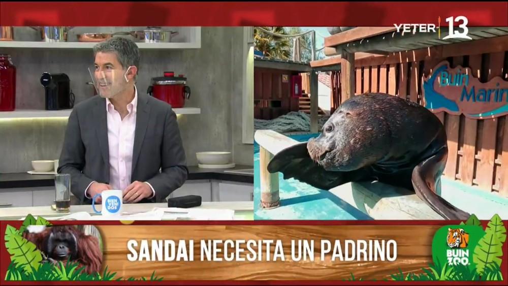 Tonka bromeó a Polo Ramírez en Bienvenidos