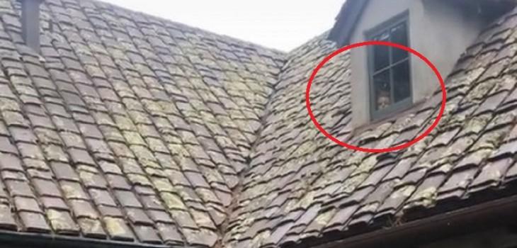 Video que muestra inquietante rostro en casa abandonada desata dudas en redes