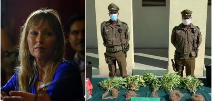 Carabineros explica allanamiento a hija de Ana María Guzmuri: tenía 5 plantas de marihuana