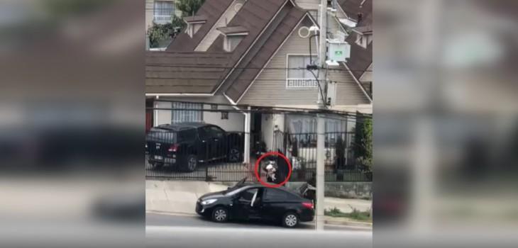 Asaltantes disparan a dueño de una vivienda en Quilpué para robar 6 perros