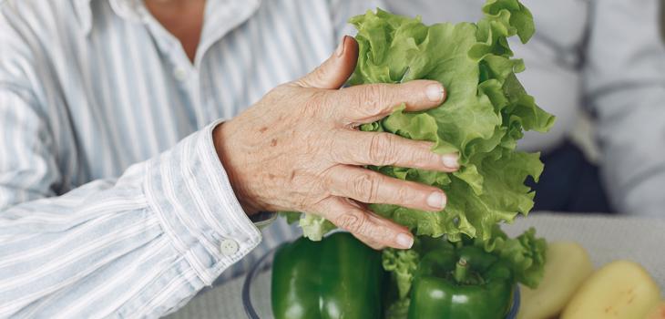 Nutrición del adulto mayor