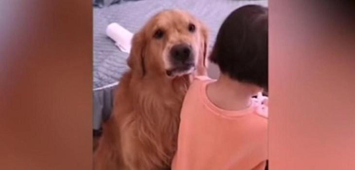 Perro defiende a pequeña de los retos de su madre