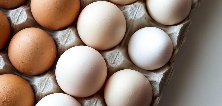 Diferencia de los huevos de color y blancos