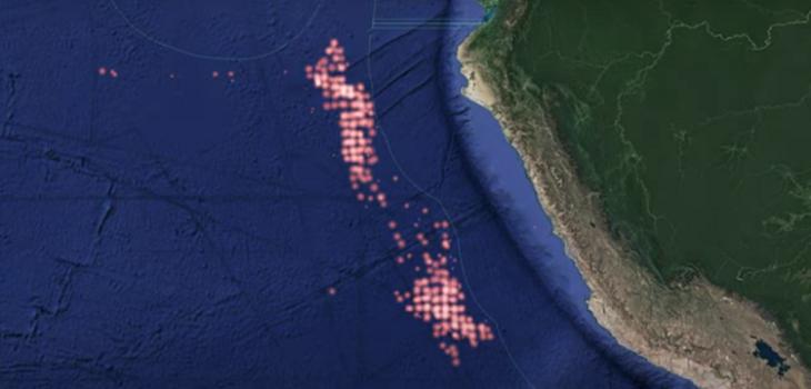 Rastreo muestra que gran flota pesquera china está a sólo 400 millas náuticas de aguas chilenas