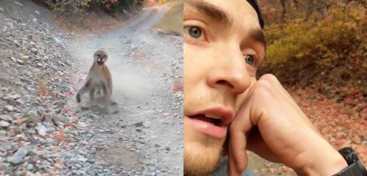 Senderista fue perseguido por seis minutos por un puma