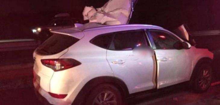 Oficial de Carabineros muere y sus tres hijos quedan heridos tras colisión con caballo en Ruta 5 Sur