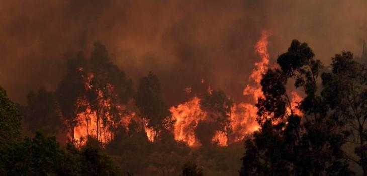 Más de 4 mil hectáreas consumidas es el saldo del incendio que aún permanece activo en Valparaíso