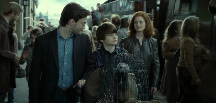 Captura | Harry Potter 7