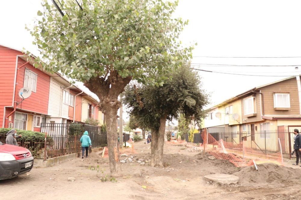 Municipalidad de Talcahuano